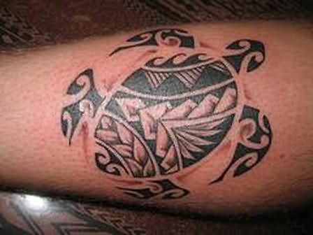Stylish Turtle Tattoo On Leg