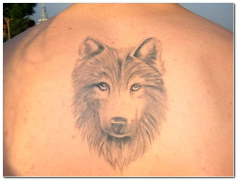 Wolf head tattoo for Wolf head tattoos