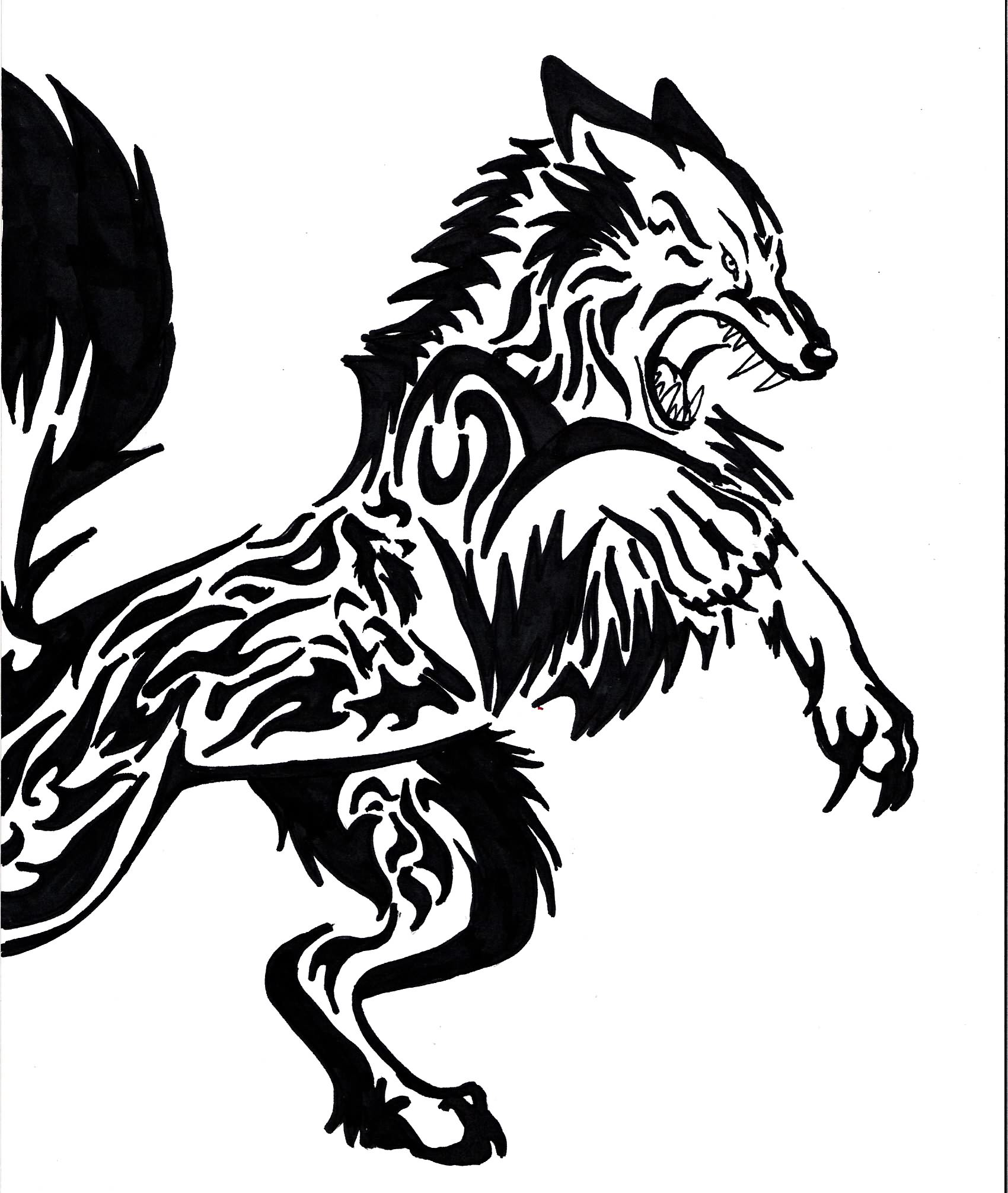 Angry Wolf Attacking Tattoo Angry Black Wolf Drawing