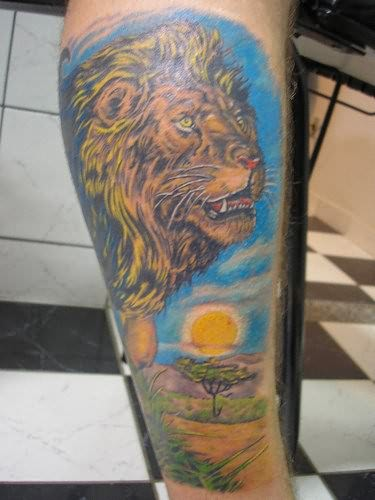Lion king of the jungle tattoo - photo#15