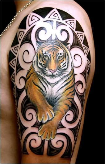 Tiger Tattoo Designs On Shoulder