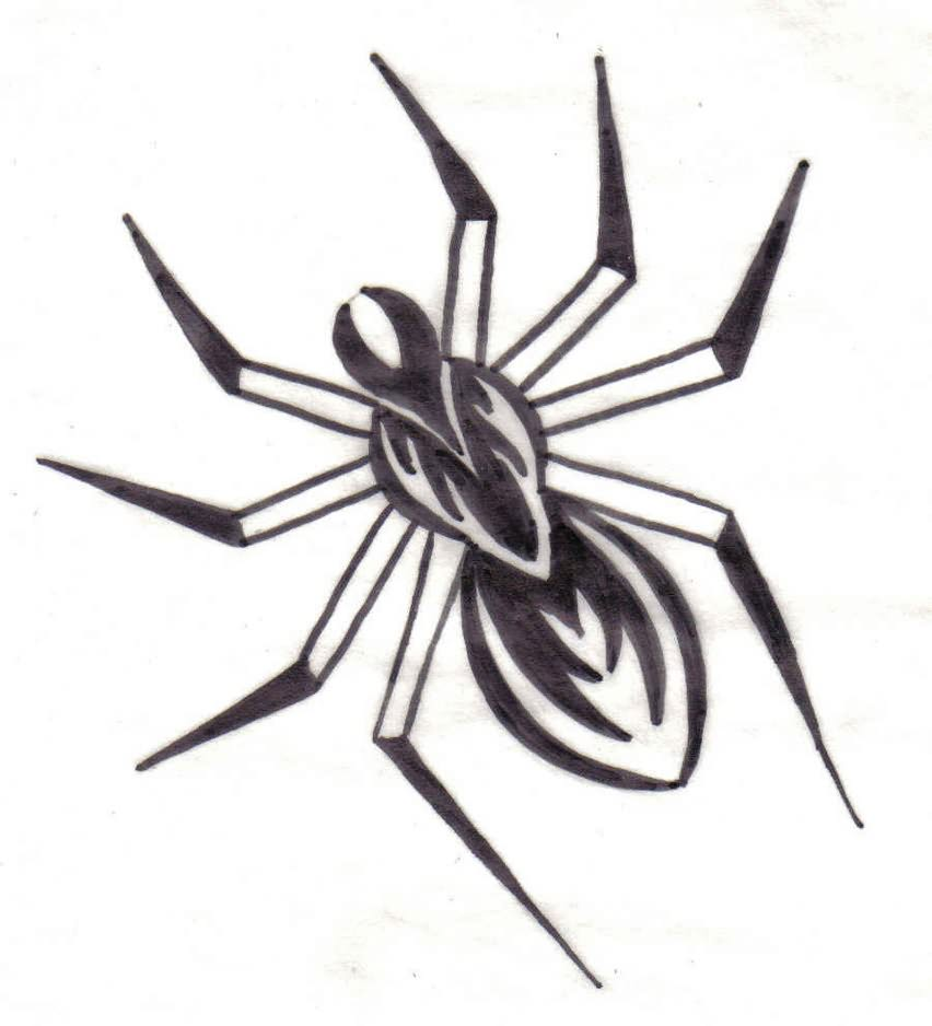 It's just a photo of Unusual Drawing Of Spiders